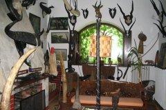 Afrika múzeum - bellülről